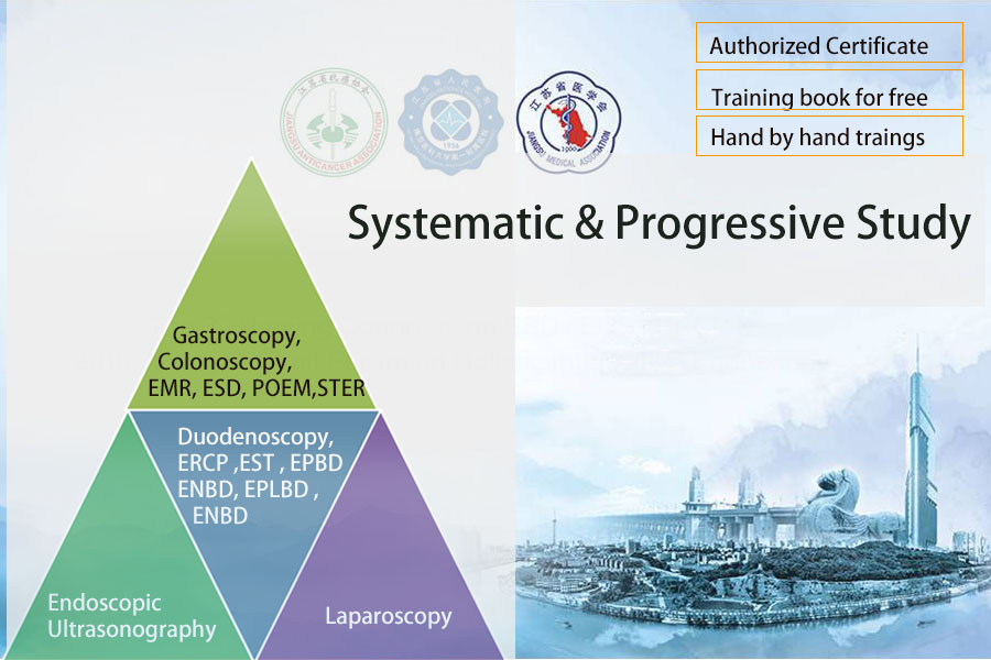 Systematic and Progressive Study